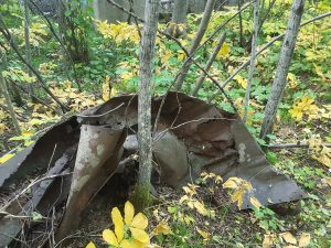 Wreckage of a boiler or tank, in the ruins of the North American Hotel on the Townsite of Walsh, in Kugler Township in northern Minnesota.