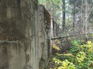Walls of the North American Hotel on the Townsite of Walsh, in Kugler Township in northern Minnesota.